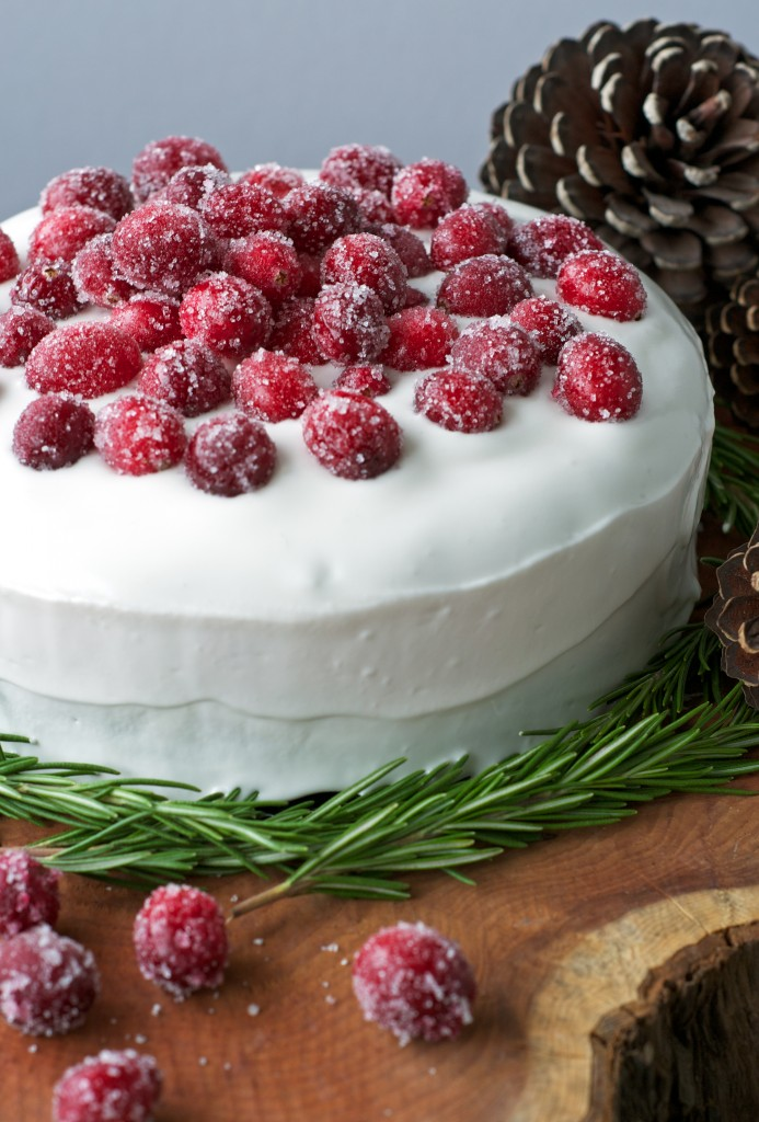 Christmas-Cake 01-by-W-in-N