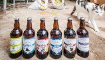 guten-free brewery